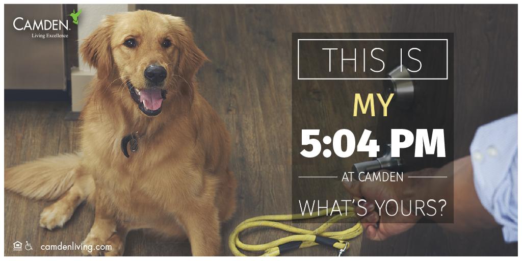 Camden loves pets!