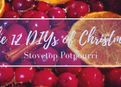 The 12 DIYs of Christmas: Stovetop Potpourri
