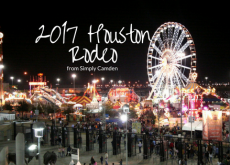 2017 Houston Livestock Show and Rodeo