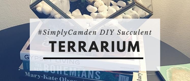 DIY Succulent Terrarium project for your apartment home
