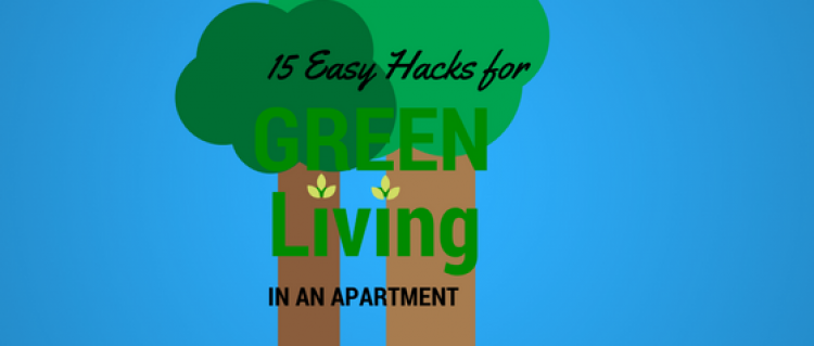 15 ways to save energy in your apartment now